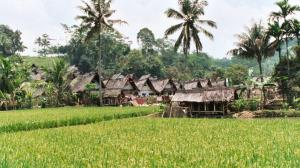 Kampung Naga, Salawu District, Western Java (Demming 2002)